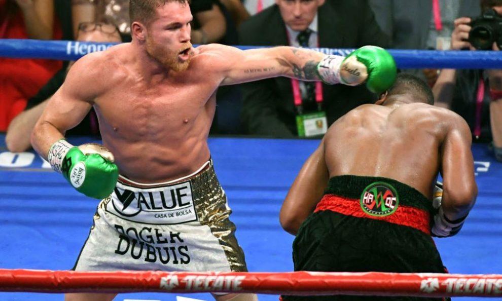 canelo fight